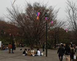 asukayama2.jpg