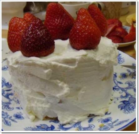 2009クリスマスケーキ完成