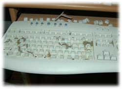 keyboard12.jpg