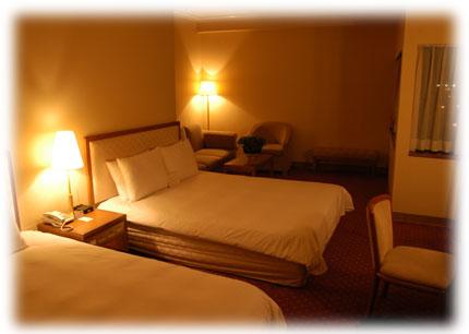 ホテルリバービュータイペイの一室